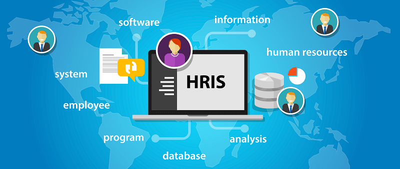 Best Human Resource System Software Solution Hr Software India
